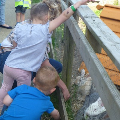 Trip to Hop Farm May 2016